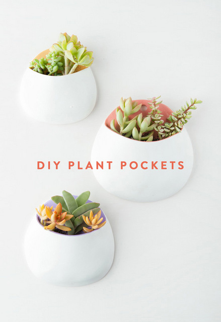 7 diys for 7 days, crafts, crafts for kids, handmade, DIY, art and crafts, decor, home made, chinese checkers, clay trays, soaps, semi precious, plants, plant pockets, plants at home, floral, flower power, ice candles, recycling, hammocks, seating,