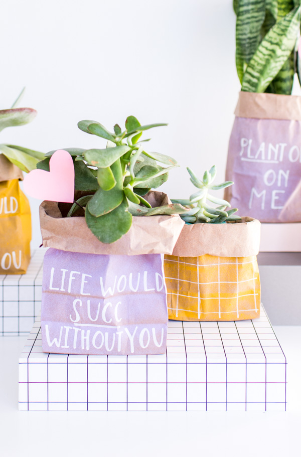 valentines plant gift ideas