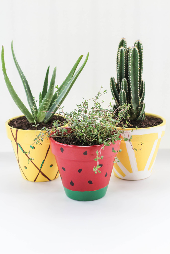 fruity flower pots