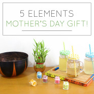 5 Elements Mother's Day Gift Ideas!