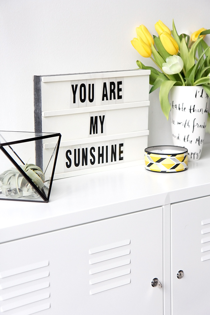 DIY Lightbox by I Spy DIY