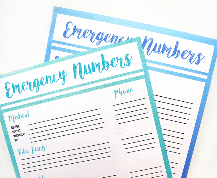 Free Printable Emergency Contact List | The Craftables