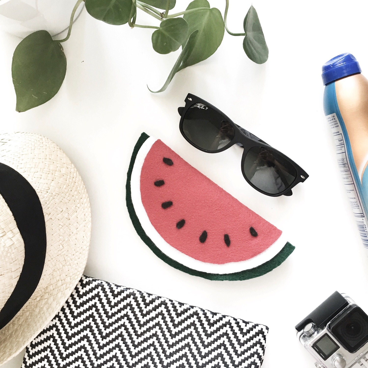 Watermelon Sunglass Case