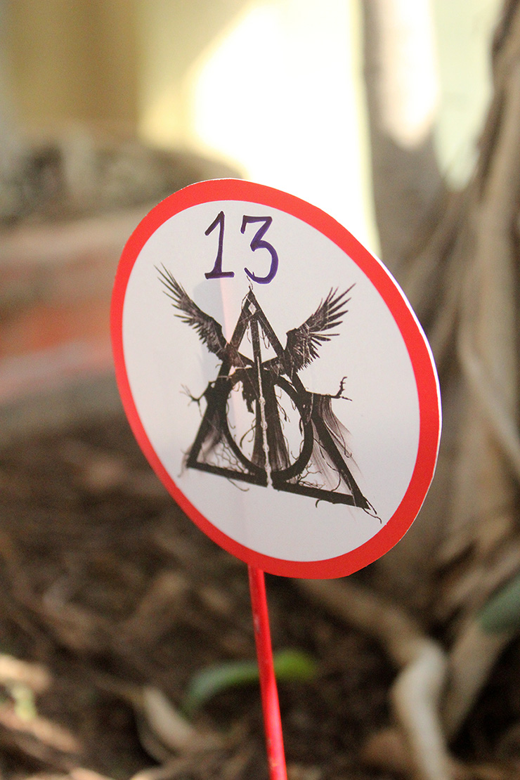 easy harry potter party decor